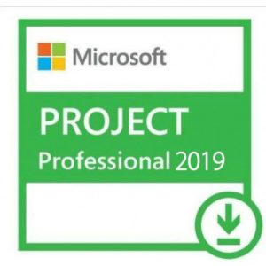 Project Professional 2019-500x500