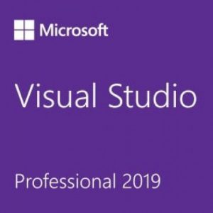 Visual Studio Professional 2019-500x500